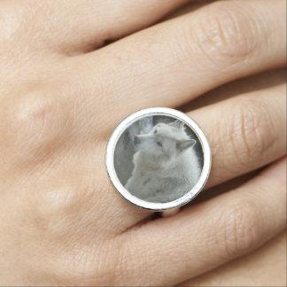 White Wolf Photo Rings