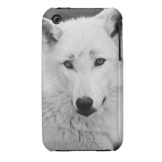 White Wolf Photograph Case Mate iPhone 3 Case