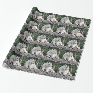 White Wolf Resting Wrapping Paper