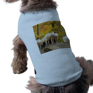 White wolf - snow wolf - wolf animal shirt
