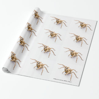 WHITE WRAPPING PAPER WITH ROWS OF SPIDERS.