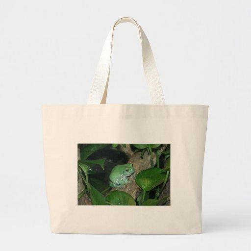 White's Tree Frog, Dumpy Frog Bag