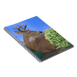 Whitetail Buck Deer Notebook