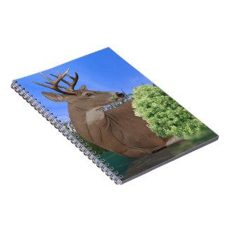 Whitetail Buck Deer Spiral Notebook