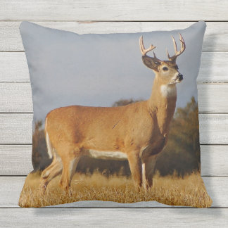 Whitetail Buck Outdoor Throw Pillow