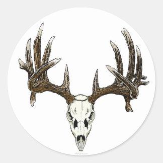 Whitetail buck skull classic round sticker