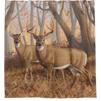 Whitetail Deer Buck & Doe Autumn Maple Woods