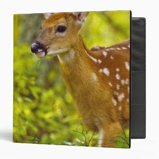 Whitetail deer fawn in Whitefish, Montana, USA Vinyl Binder