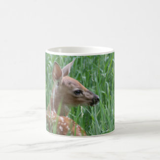 Whitetail Deer Fawn Mug