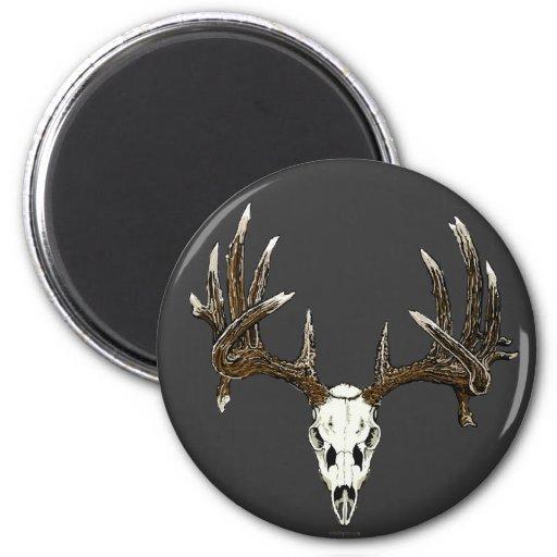 Whitetail deer skull 1 fridge magnets