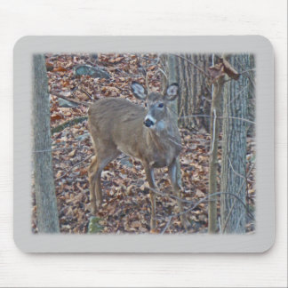 Whitetail Deer Spike Buck Series Mouse Pad