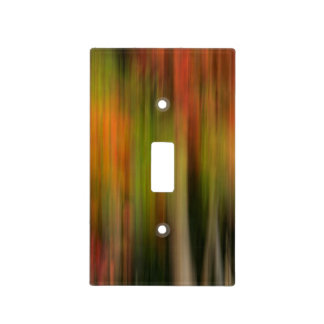 Whitman Mission National Historic Site, WA Light Switch Cover