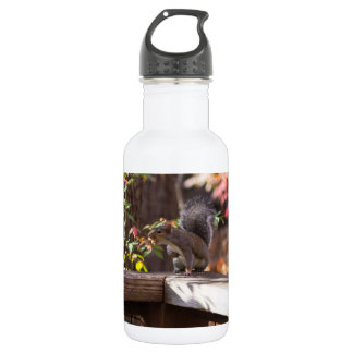 Who Goes There 532 Ml Water Bottle