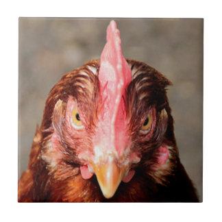 Who you callin` chicken ceramic tile