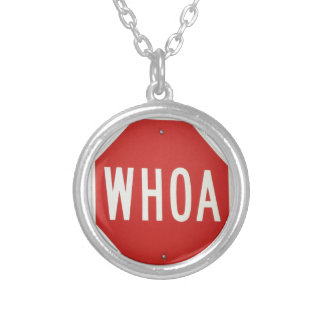 WHOA! SILVER PLATED NECKLACE