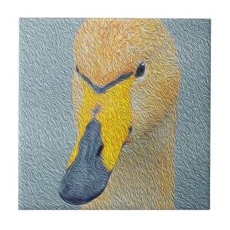 Whooper Swan Cygnet Bird Tile