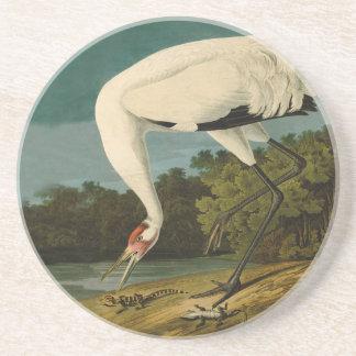 Whooping Crane Audubon Art Coaster