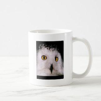 WHOOT OWL MUG