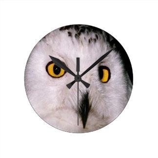WHOOT OWL WALLCLOCKS