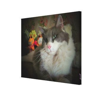 Who's Adorable now? Cute Kitty Canvas Prints
