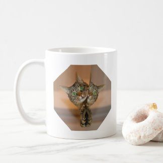 Who's That Other Cat?  Funny Cat Lovers Coffee Mug