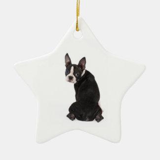 Who's The Boston Star Ornament