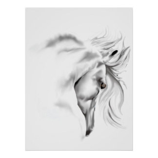 Whte Horse Head  Poster