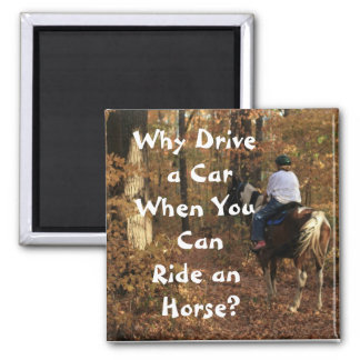 Why Drive a Car? Magnet