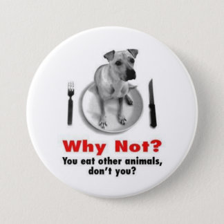 Why Not? 3 Inch Round Button
