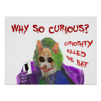 Why so Curious? - Crazy Clown Cat Poster