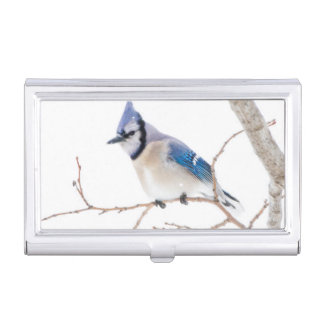 Wichita County, Texas. Blue Jay5 Business Card Cases