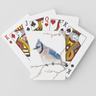 Wichita County, Texas. Blue Jay5 Playing Cards