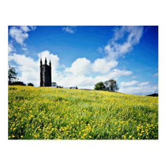 Wide comb buttercup flowers, Devon, England  flowe Postcard
