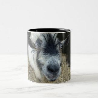 Wide-eyed Goat Mug