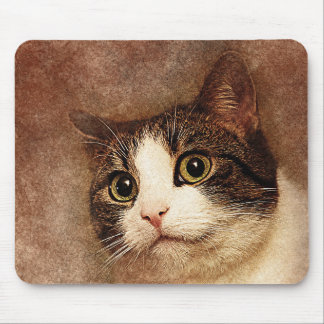 Wide Eyed Kitty Portrait | Abstract | Watercolor Mouse Pad