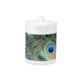 Wide Spreed Of Peacock Eyes