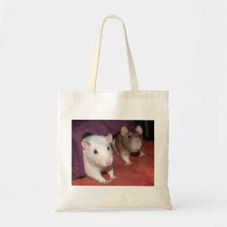 Wiki and Arthur rats