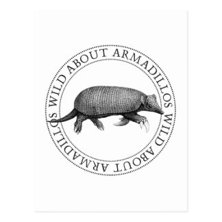 Wild about Armadillos Postcard