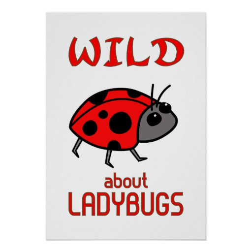 Wild About Ladybugs Poster