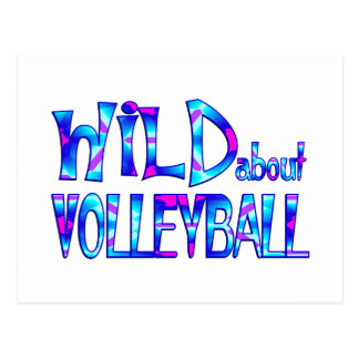 Wild About Volleyball Postcard
