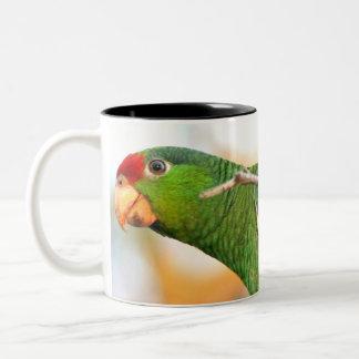 Wild Amazon Parrot Mug