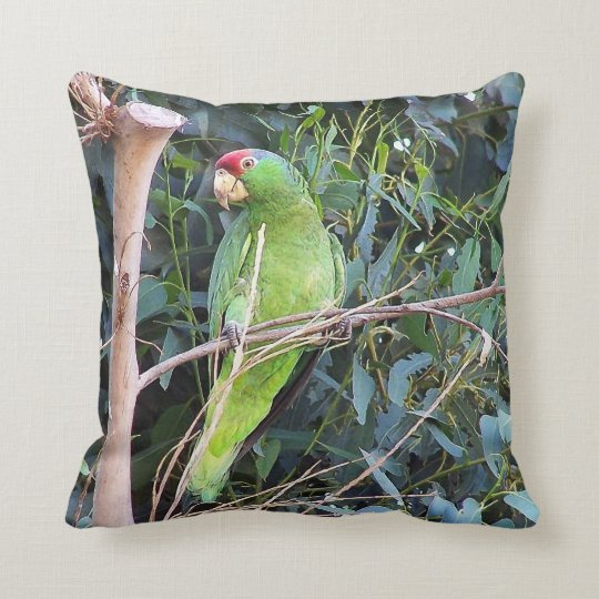 Wild Amazon Parrot Pillow