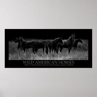 Wild American Horses Poster
