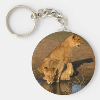 wild animals 300 keychain