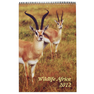 Wild animals Africa safari 2012 Wall Calendars
