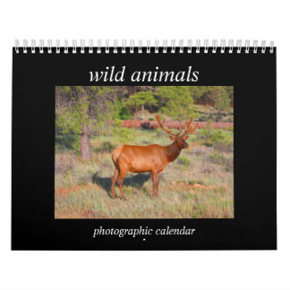 wild animals calendar
