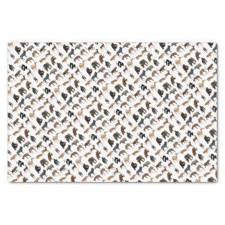 Wild animals tissue paper