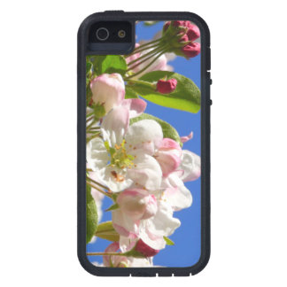 Wild Apple Tree blossoms iPhone 5 Case
