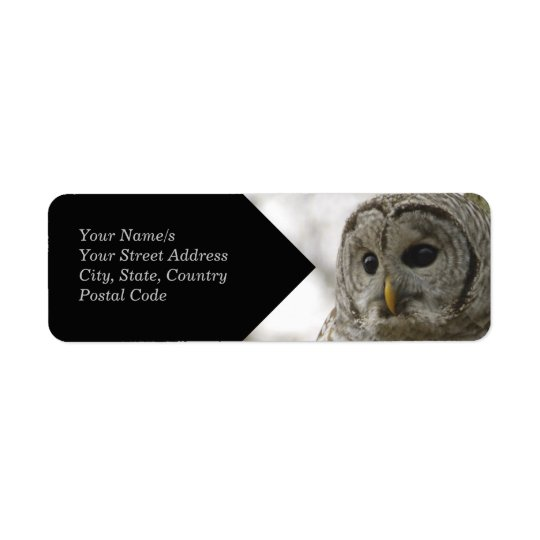 Wild Barred Owl Face Avery Return Address Label