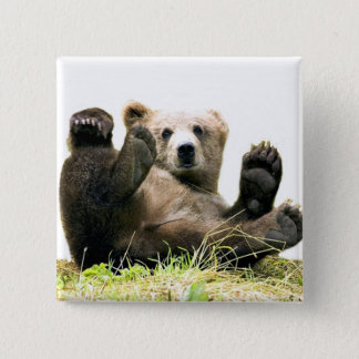 Wild Bears 2 Inch Square Button